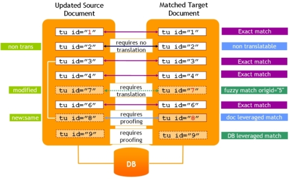xml:tm focused matching